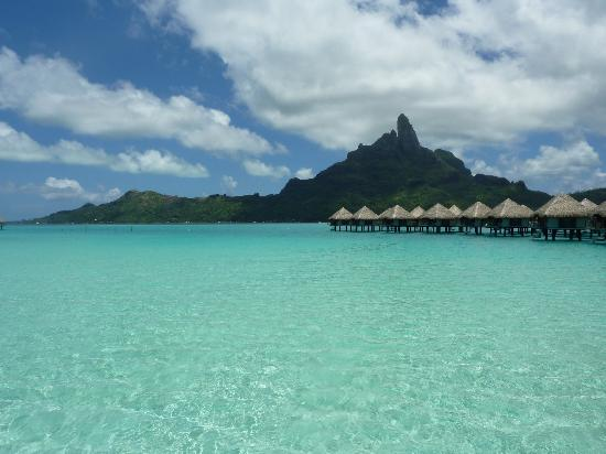 Flyvip Nz Get More Class For Your Dollar 187 Best Price Package Deals Bora Bora